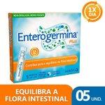 Enterogermina 4 Bcfu/5ml Com 5 Frascos