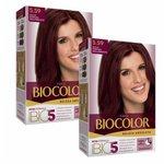 Compre Tintura Biocolor Beleza Absoluta Cor Acaju Púrpura Deslumbrante e Ganhe 50% na Segunda Unidade